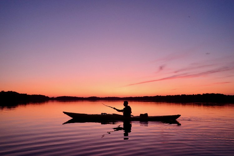 North North East Kayak Tours  & Winter Activities