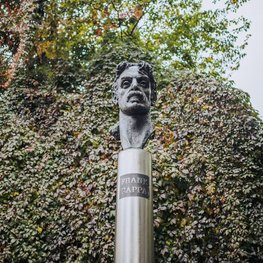 Monument to Frank Zappa