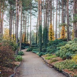 Botanical Garden at Kairėnai