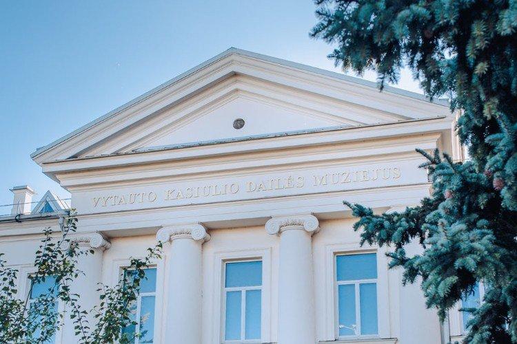 Muzeum Sztuki Vytautasa Kasiulisa