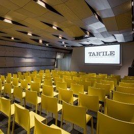 Lithuanian Art Centre TARTLE