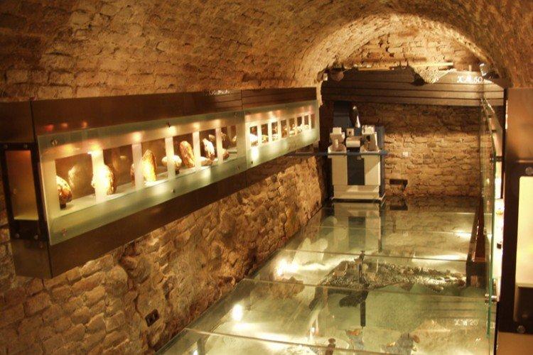 Amber Museum - Gallery