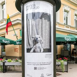 Vilnius Centre Becomes Art Gallery: 100 Art Objects Displayed in Open-Air Exhibition