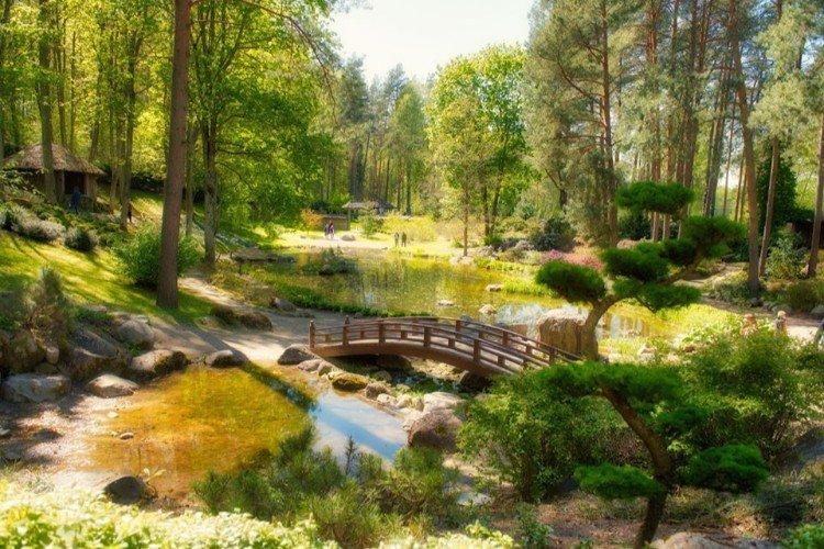 Japoniškas sodas Vilniaus universiteto botanikos sode