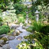 """""""Tyros širdies"""" japoniškas sodas"""