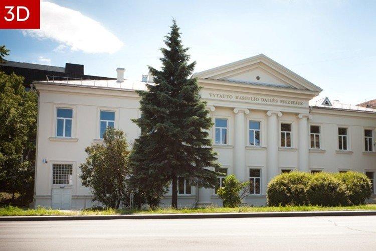 Lietuvos diasporos dailės muziejus