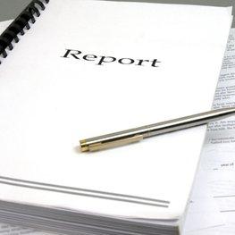 Ataskaitos forma